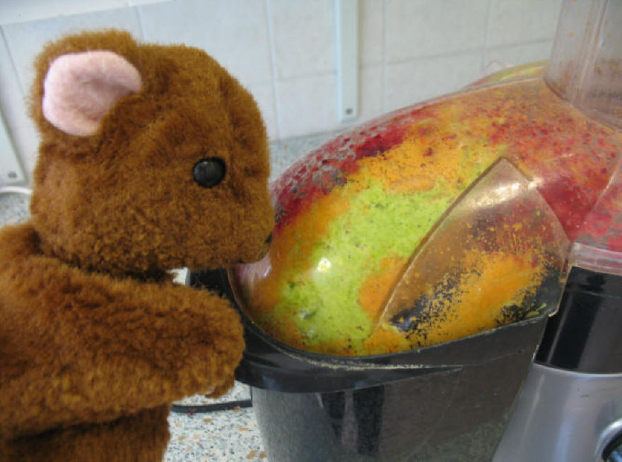 Brown Teddy and the juicer