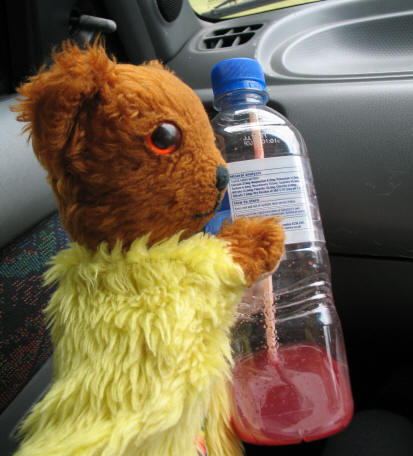 Yellow Teddy with carrot and beetroot juice drink