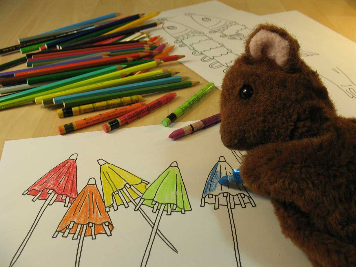 Brown Teddy colouring