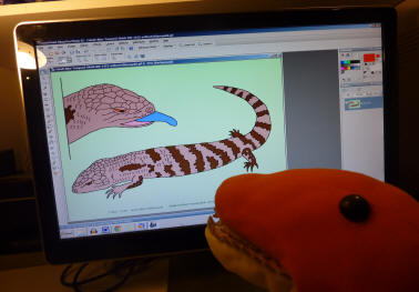 Dino filling in line drawing of Cobalt the Bllue-Tongued Skink