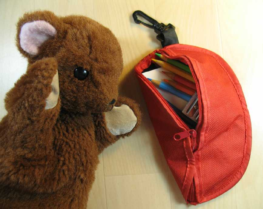 Brown Teddy with Observing Bag