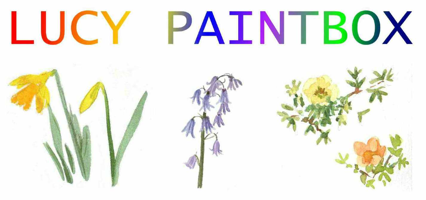 Lucy Paintbox website banner logo